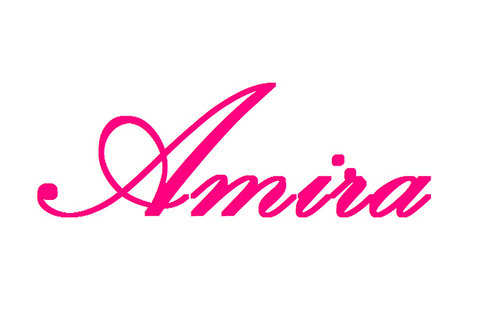 sign amira