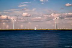 Modern Dutch Landscapes