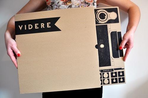 videre pinhole camera 3