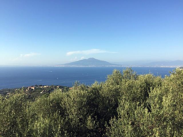 Vesuvius from Villa Eliana