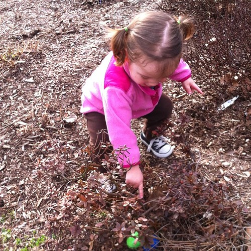 There!  #egg #hunt #easter