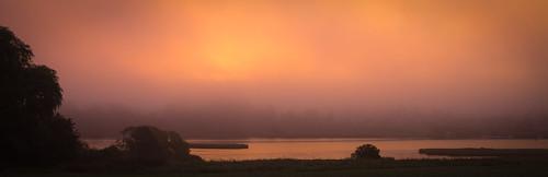 trees orange water silhouette misty denmark moody wide fiord kirkesåby regionzealand