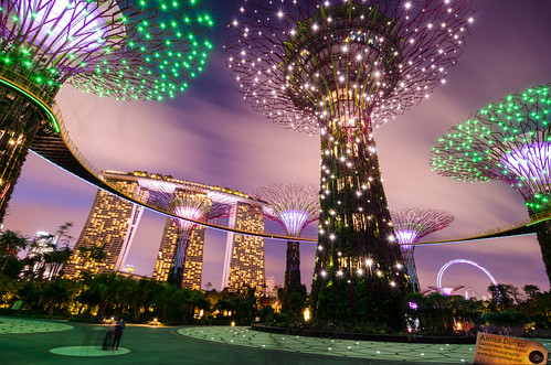 Supertrees - Singapore