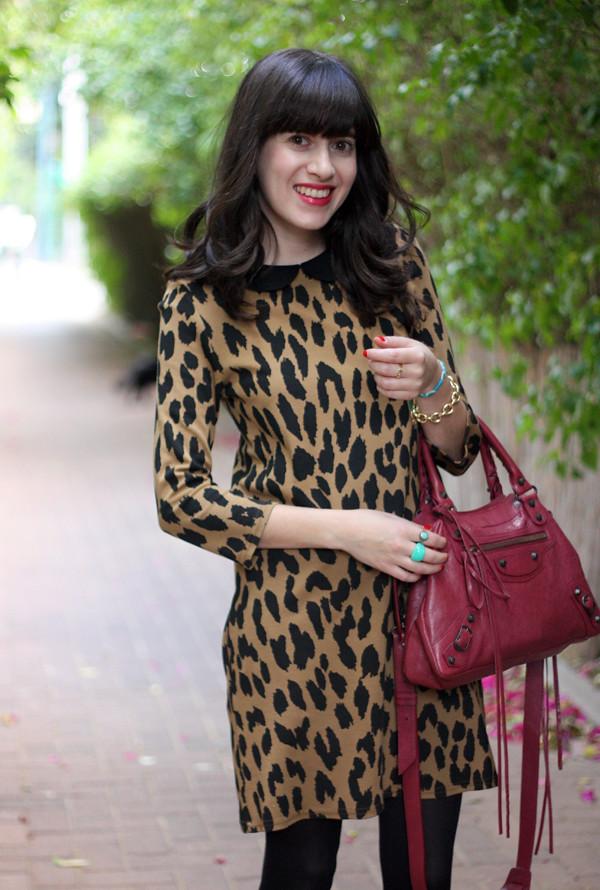 topshop leopard dress, balenciaga bag, israeli fashion blog, בלוג אופנה, תיק בלנסיאגה, תיקי מעצבים, שמלה מנומרת טופשופ