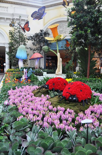Do You See Why I Think of Willy Wonka? Bellagio's Conservatory & Botanical Gardens