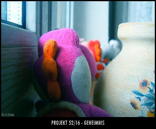 Projekt 52/16 - Geheimnis