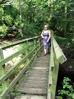Bridge Deepdale Wood