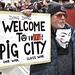 Ding Dong Welcome to Vomit Pig City