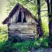 Old vineyard shack by MaxArt Photo