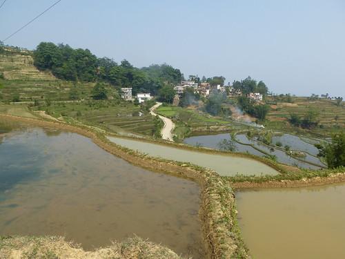 Yunnan13-Yuanyang 7 (4)