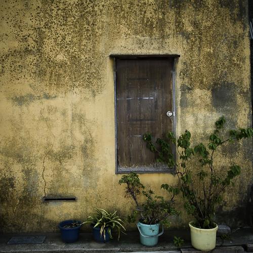 Sub Door with Potted Plants, Monzennakacho