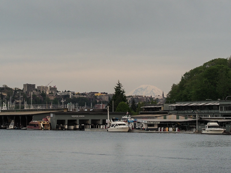 Mt. Rainier as seen from the ship canal near Fremont