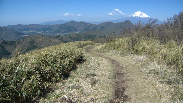 箱根トレイル