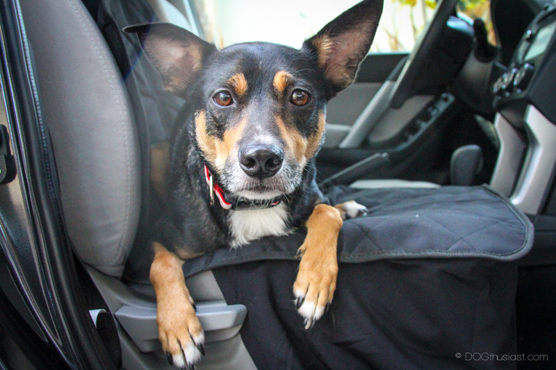Protection extends down the side of the seat of this dog seat cover for your SUV.