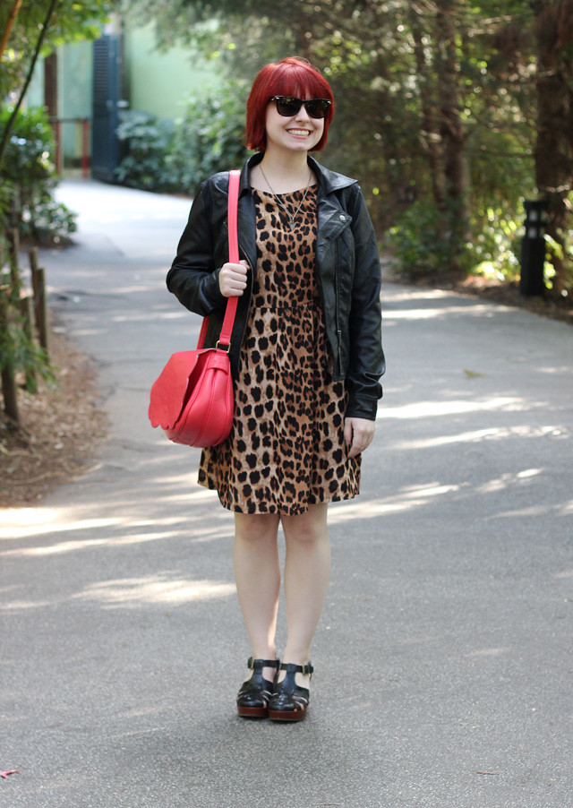 Leopard Print Dress, Black Leather Jacket, Red Purse, and Wayfarer Sunglasses