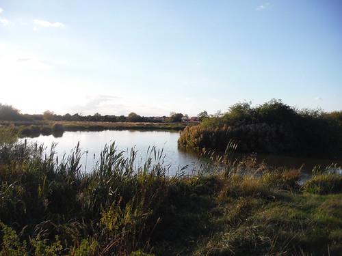 Fishing Pond near Grand Union Canal