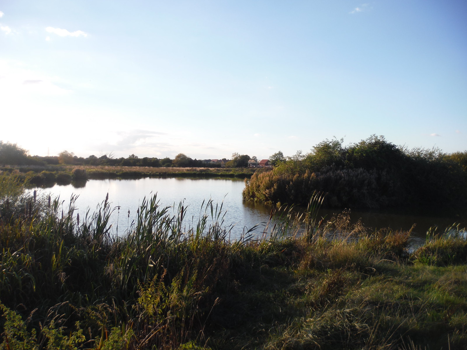 Fishing Pond near Grand Union Canal SWC Walk 194 Aylesbury Vale Parkway to Aylesbury
