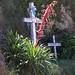 Roadside shrine - Cruces cerca de Santa María Yacochi, Región Mixes, Oaxaca, Mexico por Lon&Queta