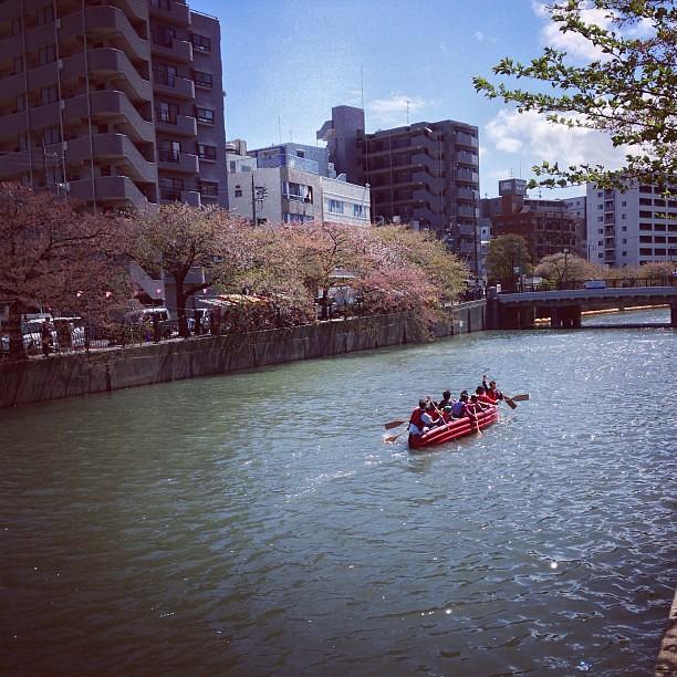 大岡川情景