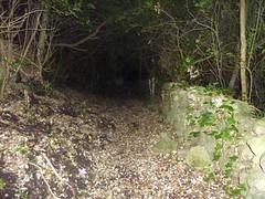 Chemin de Sant'Agostinu : difficile à suivre avec l'obscurité de fin de journée