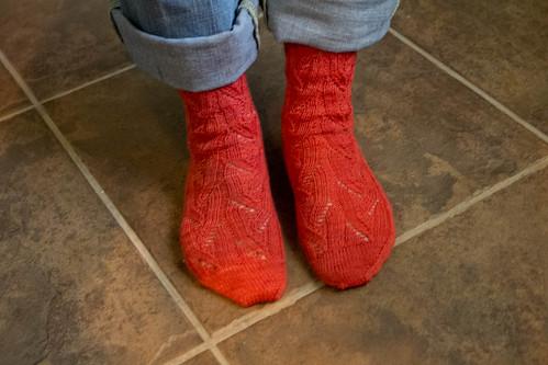 Angee socks1