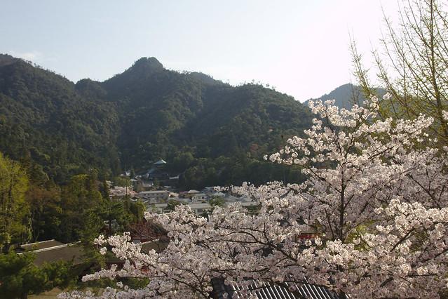 0935 - Isla de Miyajima