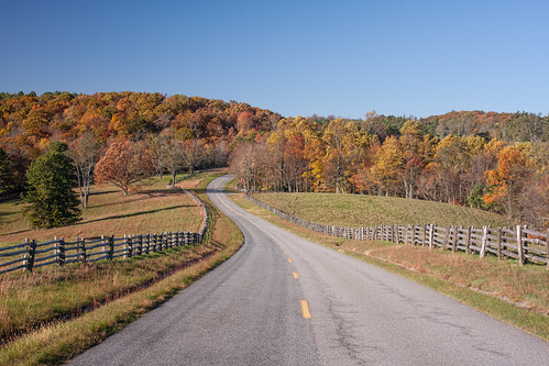 Blue Ridge Parkway through Droughton Park