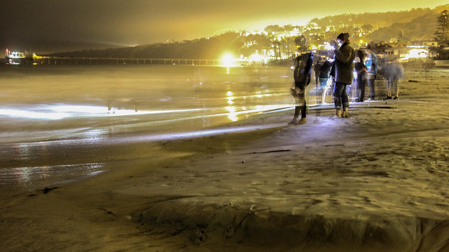 Grunion Run @ LJ Shores - North