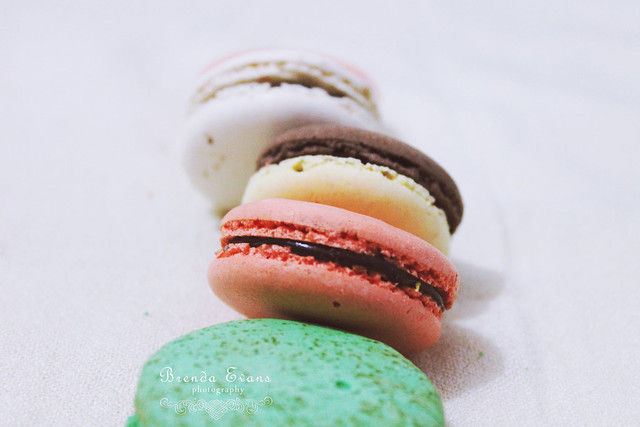 Beryl's chocolate kingdom macarons