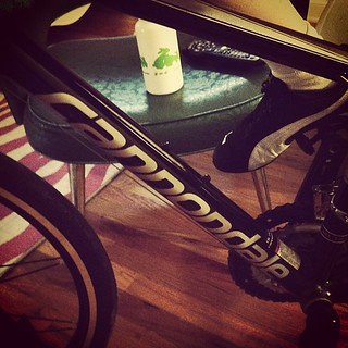 Day120 Put my old bike on the trainer today 4.30.13 #jessie365