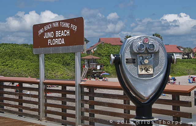 juno beach- sign