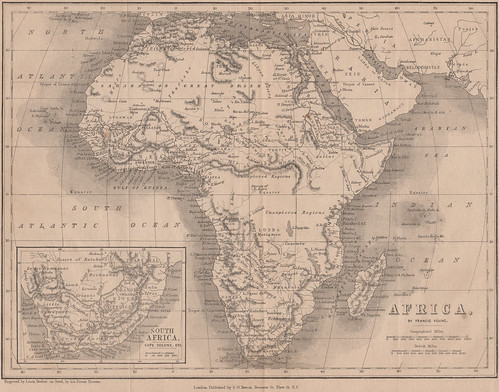 02_beetons_africa