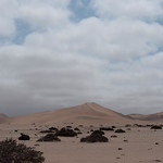 La duna 7