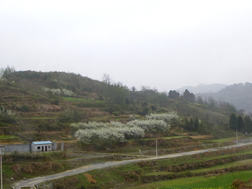 Hunan13-Zhangjiajie-Fenghuang-Bus (168)