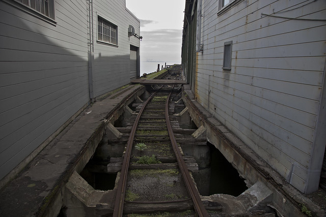 The Tracks of My Piers
