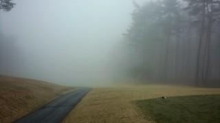 ゴルフラウンド32回目:富士桜CCはハーフ49で濃霧中断。石川遼が優勝したコースでも目標が見えないゴルフはつまらない。