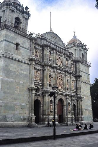 Palmas de la Catedral (01)