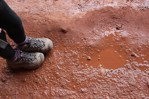 red mud