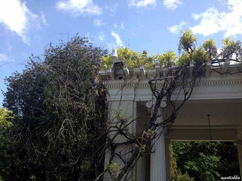 Saratoga Villa Montalvo