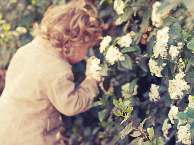 Acércate a la primavera