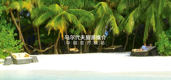 巴洛斯岛白色沙滩以及高大的原始棕榈树林
