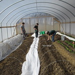 Students in the Hoop House --