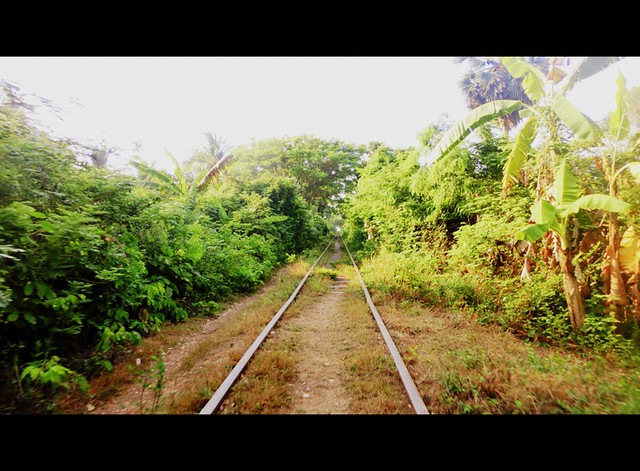 Bamboo train tracks in Battambang, Cambodia