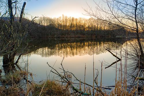 de patrick reflets franchecomté belfort leverdesoleil étang territoire zaugg besteverdigitalphotography patrickzaugg