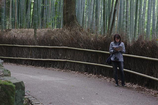 0818 - Arashiyama bosque bambú