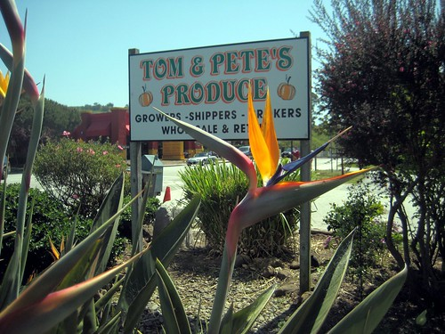 Tom & Pete's Produce, Half Moon Bay