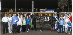 Harness races winners circle