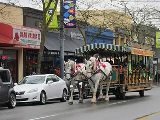 Free Horse Bus