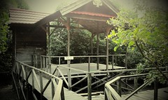 prasetyoikwan posted a photo:	Gazebo at Agrowisata Margomulyo Balikpapan