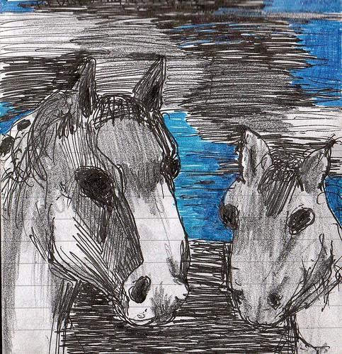 THE HORSES by Narolc